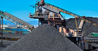 Ministerul Economiei studiază simplificarea legislației în domeniul resurselor minerale