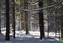 Parcul Național Retezat, între două anotimpuri