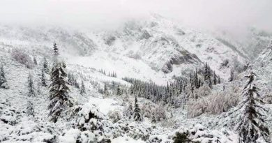 Ninge și în Retezat